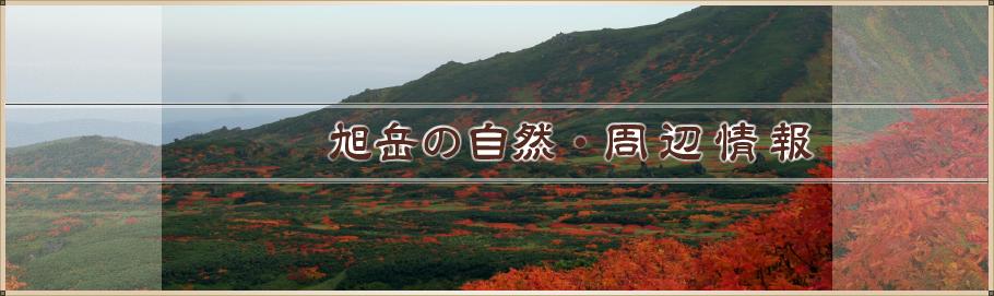 旭岳の自然・周辺情報